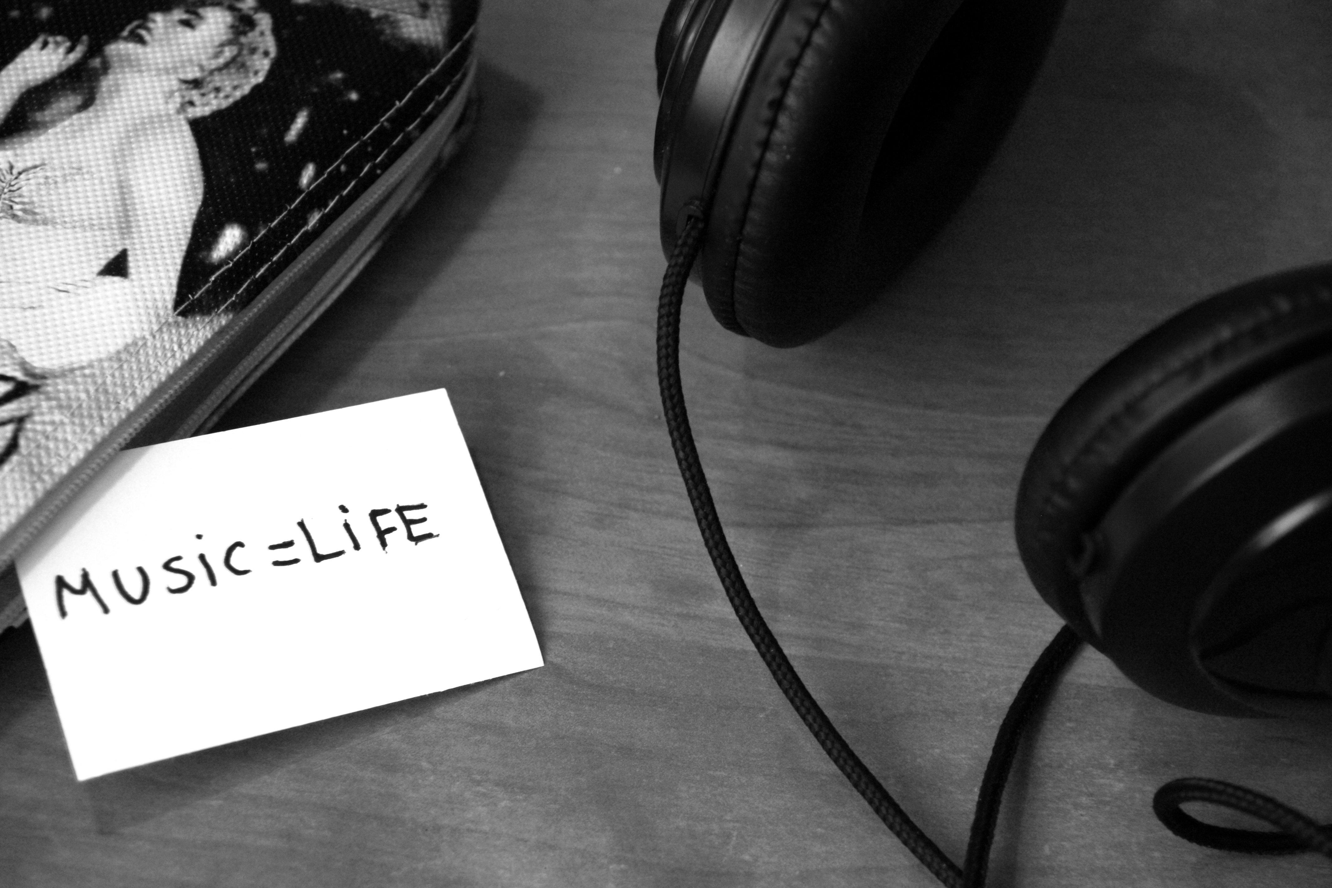 LT Blog Musica