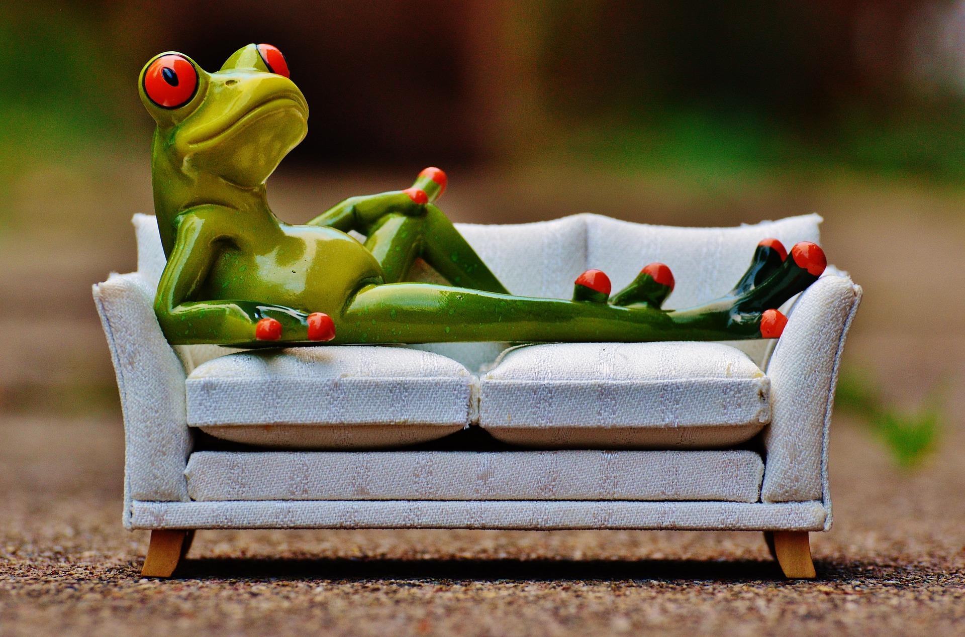 frog-1073426_1920